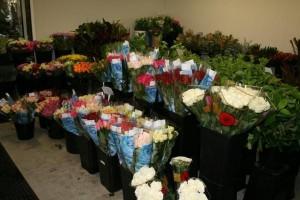 Stems Flower Market
